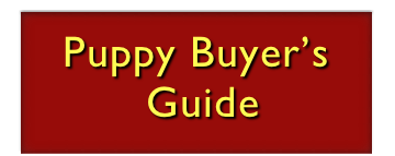 Puppy Buyer's